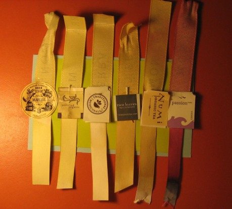 February 24 Day 10 3x5: tea strips